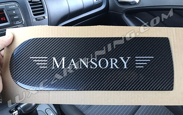 Carbon emblem Mansory style on spare tire cover for Mercedes Benz G class W463